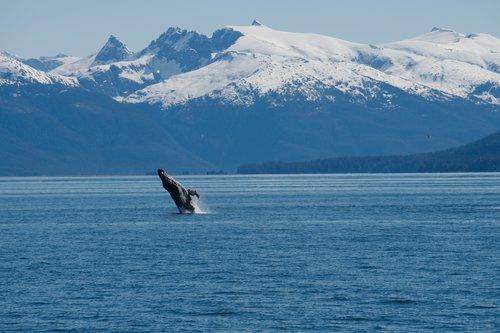 June 2 - June 9 - Juneau to Sitka