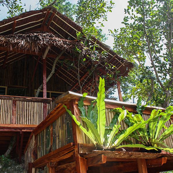 mahogany_treehouse.jpg