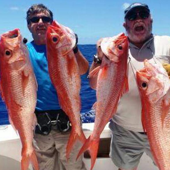 island_fishing_santo.jpg