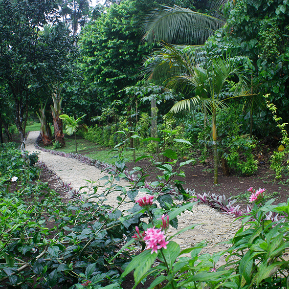 serahs_enchanted_garden.jpg