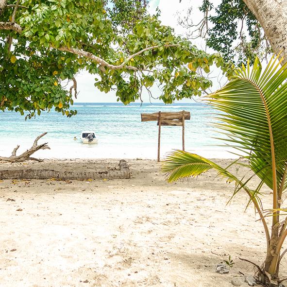 tony_beach_paradise.jpg