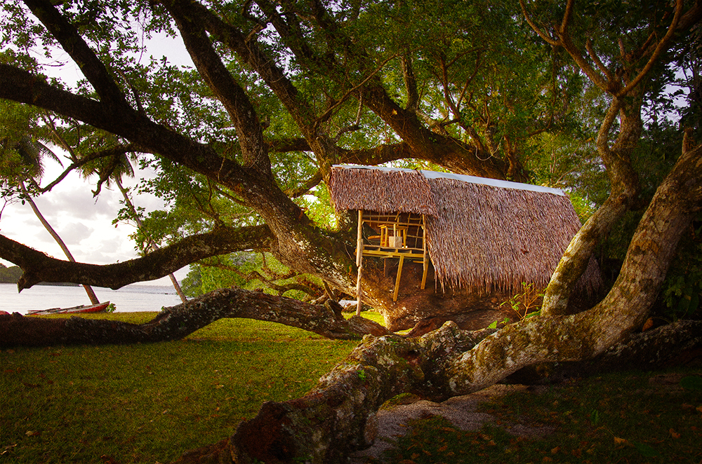 PORT-OLRY_BUNGALOWS_TREE-HOUSE_038.jpg