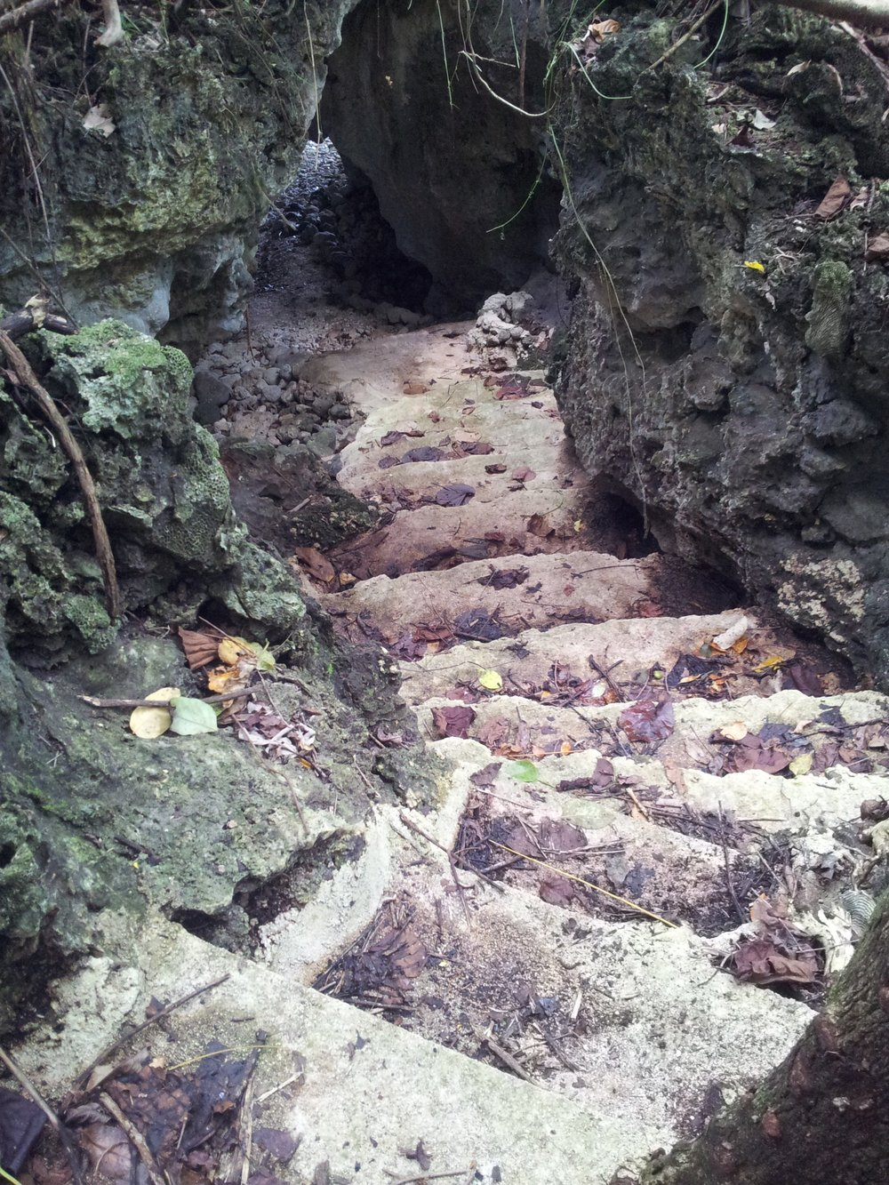 Behof SG Cave.jpg