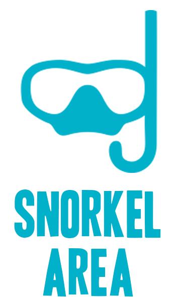 snorkel.jpg