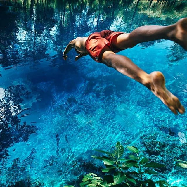 Diving into the weekend like #tgif 📷@henry_brydon . . . . #DiscoverSanto #DiscoverVanuatu #Vanuatu #EspirituSanto #crystalclear #bluehole #pacificparadise #instagood #southpacificislands #tropicalvacation #bestplacestogo #islandlife #exploremore #weareexplorers #welltraveled #ThisIsSanto #theglobewanderer #travelawesome #travelmore