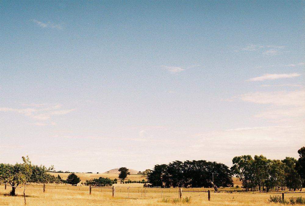 HaleyKigbo_Countryside.JPG