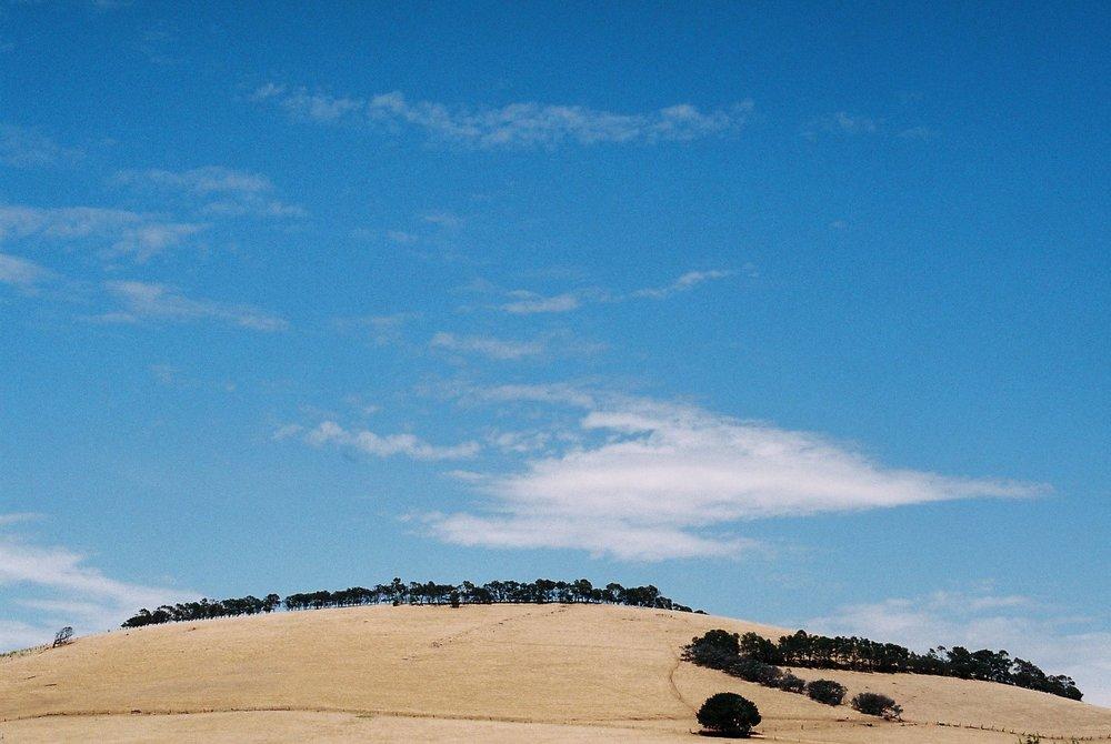 HaleyKigbo_Countryside2.jpg