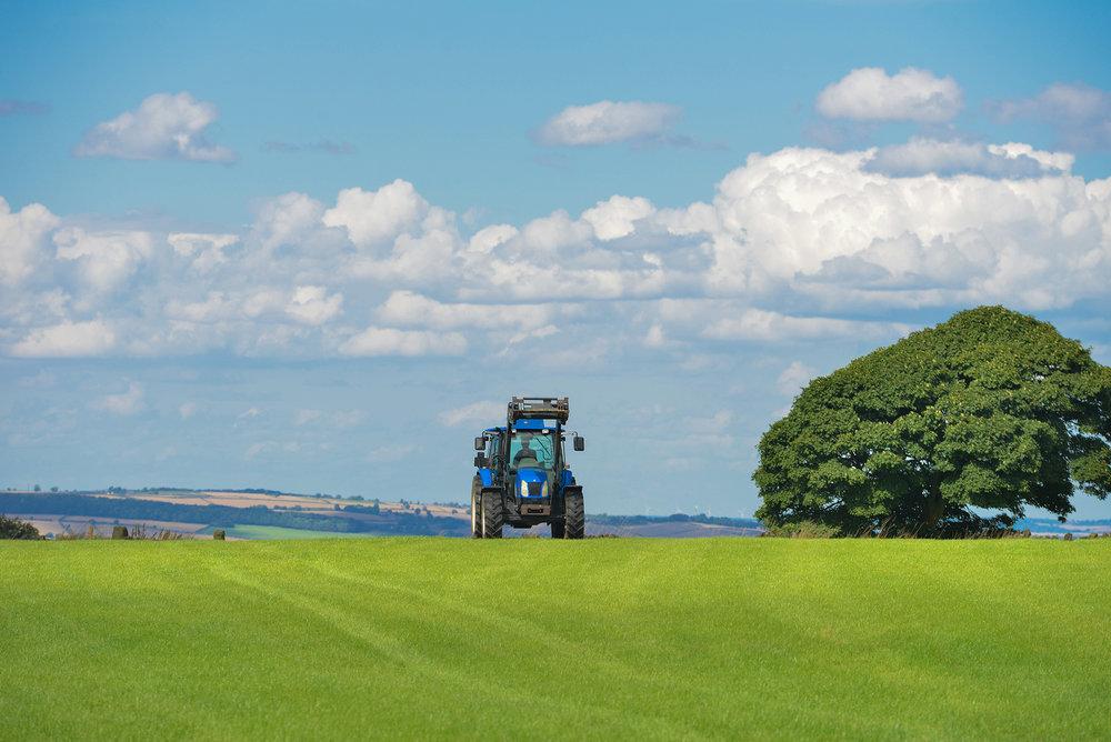 field-agriculture-farm-grass.jpg