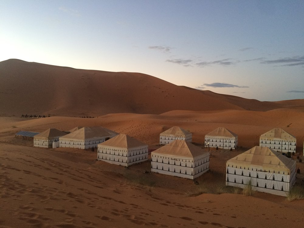 Saharan Sunset & Stargazing - Ride a camel as the sun dips behind the dunes