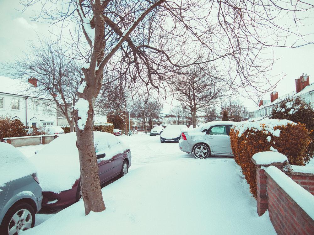 snow-10.jpg