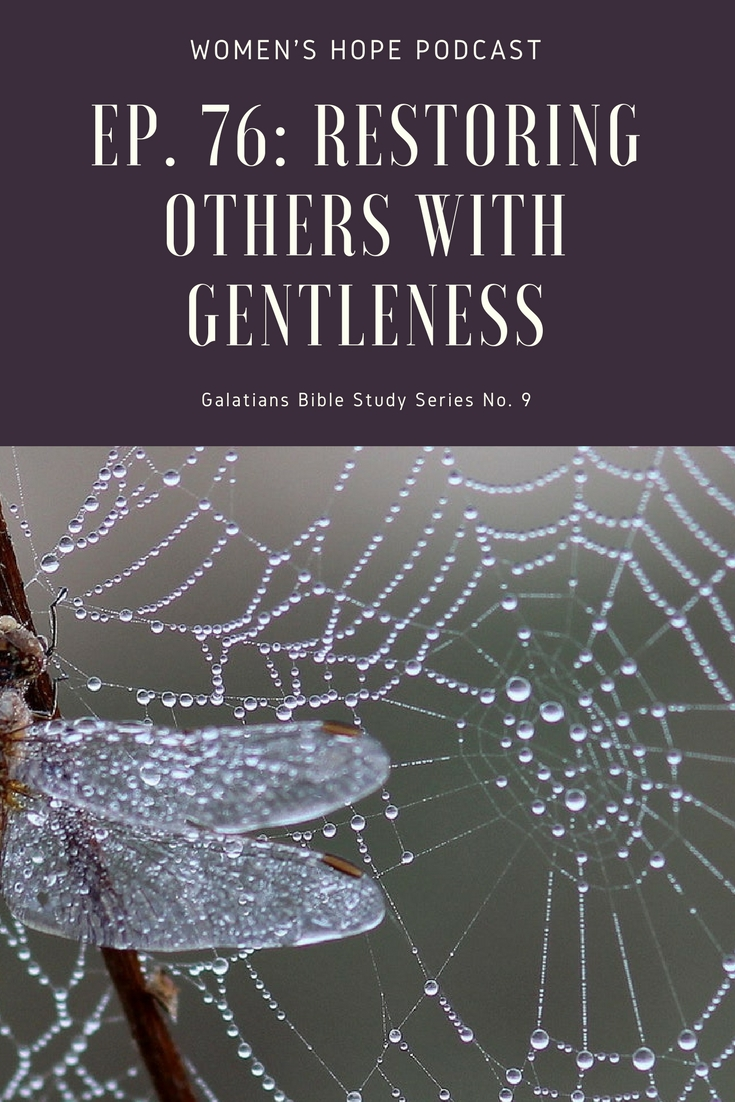 Restoring Others With Gentleness
