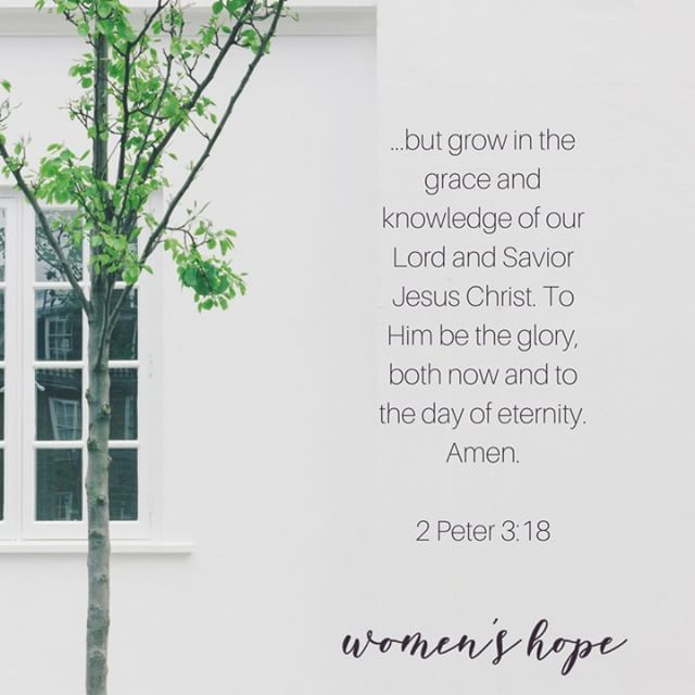 but grow in the grace and knowledge of our Lord and Savior Jesus Christ. To Him be the glory, both now and to the day of eternity. Amen. ~2 Peter 3:18 ❦ ❦ #grow #growth #grace #knowledge #glory #bibleverse #bible #2peter #scripture #womensministry #womenintheword