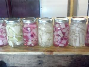 Pickled kohlrabi - yummers!