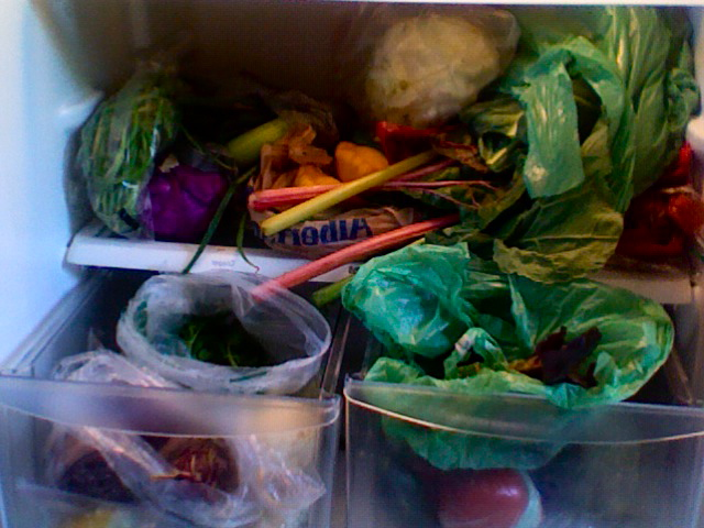 Fridge overflowing with greens