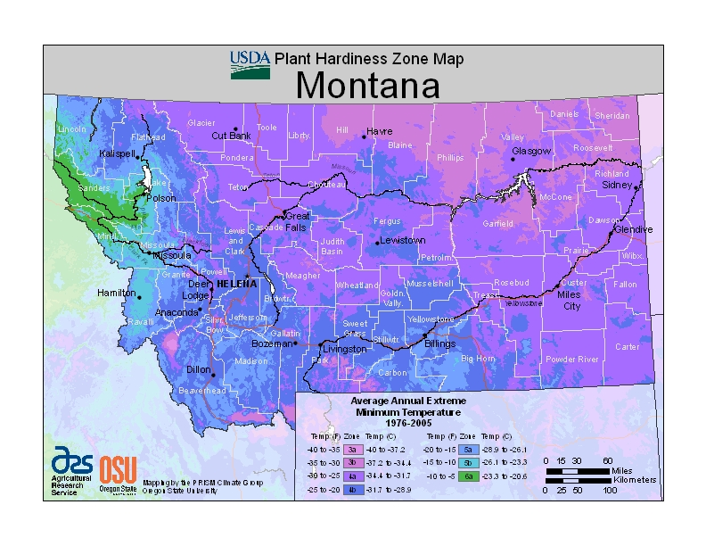And more specifically, Montana. Courtesy of http://planthardiness.ars.usda.gov/PHZMWeb/Default.aspx#.