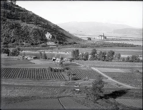 University buildings at the base of Mount Sentinel as seen from Mount Jumbo. Hughes Gardens are in the foreground. Missoula, Montana, 1901. Photo courtesy of Archives and Special Collections at the University of Montana, Maureen and Mike Mansfield Library.