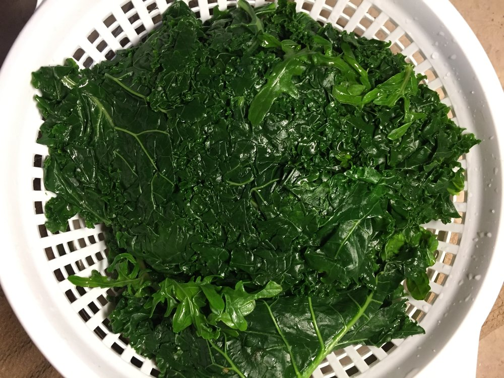 5. Remove kale from cold water bath and drain in colander - Press all the water out of the leaves.