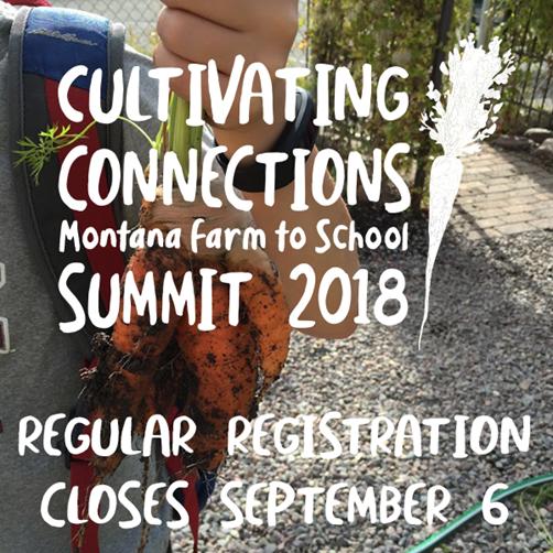 MT summit 2018.png