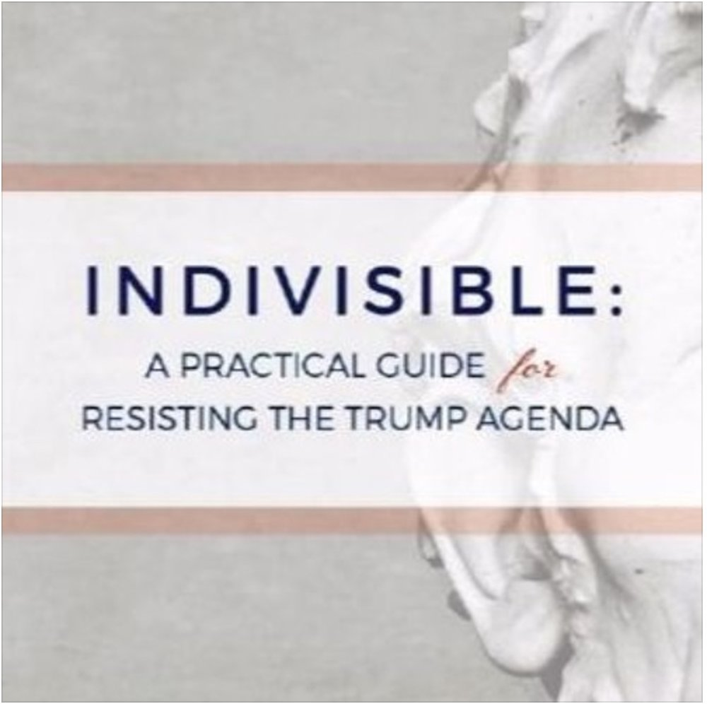 Indivisible Yolo Podcast (7.17.17) - Get to know more about Regina's background and her positive message for the people of California's 4th District.[Listen Here]