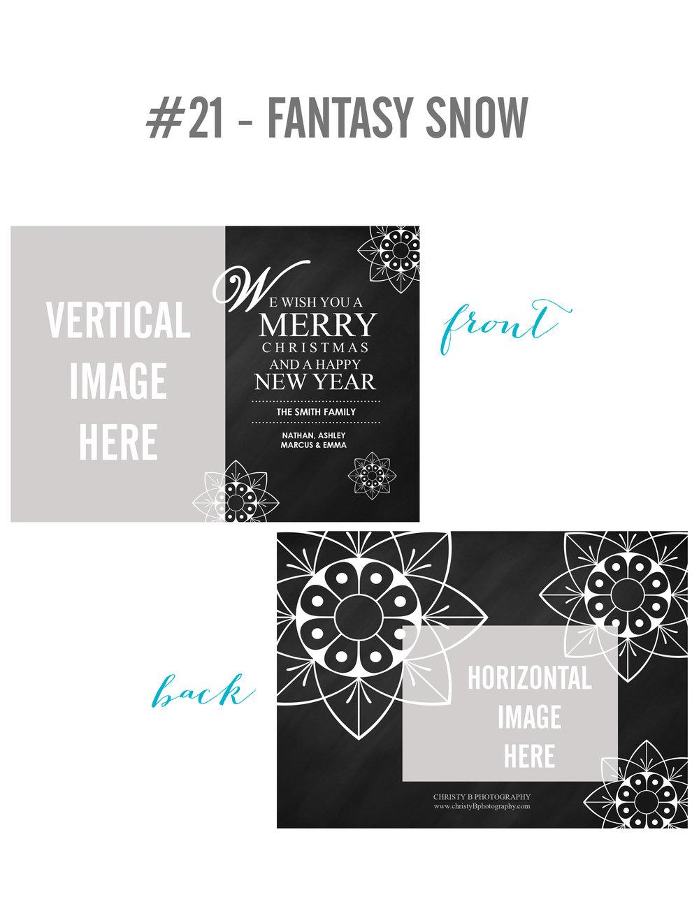 21-FANTASY SNOW.jpg