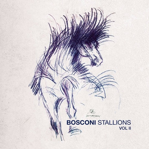 bosconi stallions.jpg
