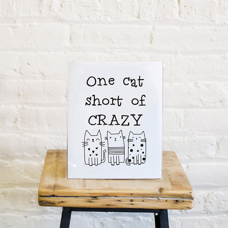 one-cat-short-print-lifestyle-1-web.jpg