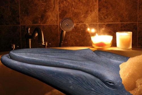 Bathethewhales.png