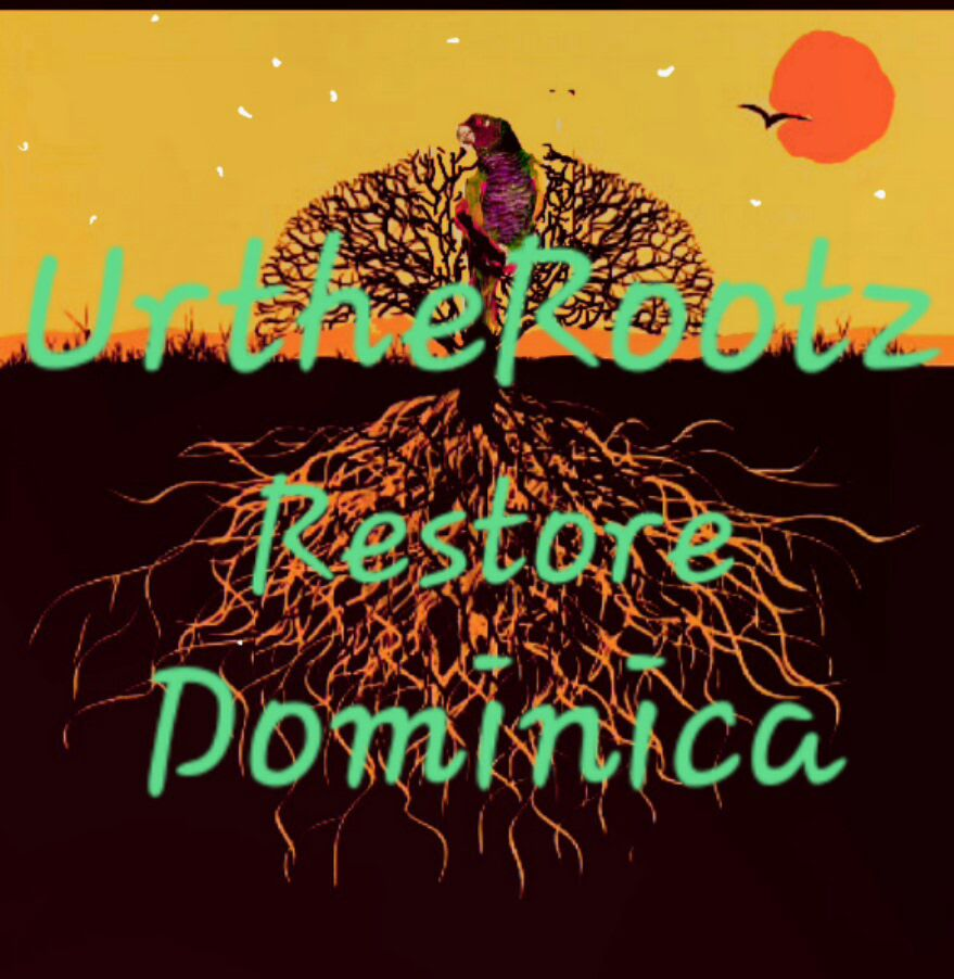 Showing support to Urtherootz - We are showing support to Urtherootz who is helping to rebuild Dominca after devasting Hurricanescheck out some of the footage and donate to the rebuild