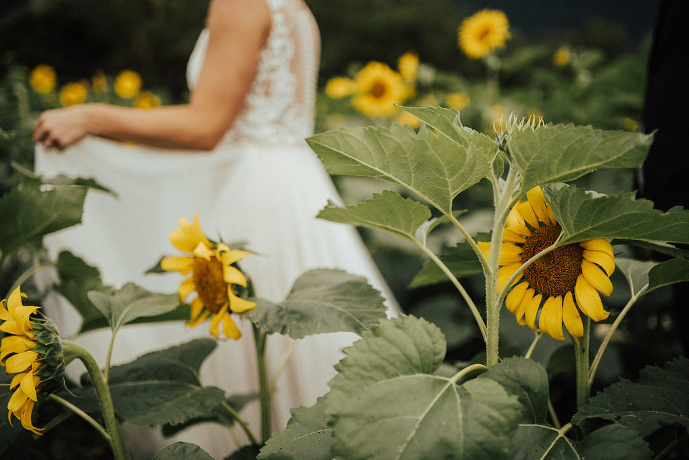 Waimanalo Country Farms | Bridal Portraits