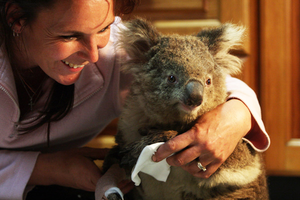 Colleen-and-Sam-koala