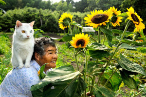 japanese grandma and her cat miyoko ihara (7)
