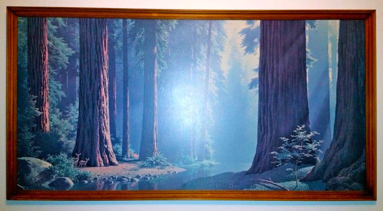 serenity - redwood detlefson