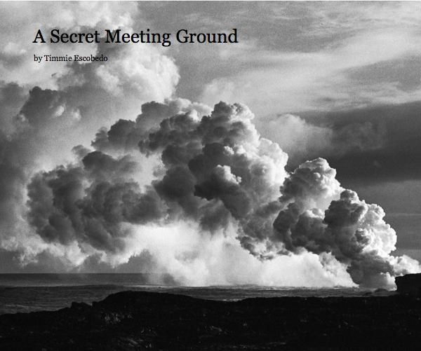 Timmie Escobedo,A Secret Meeting Ground - Advanced Photo 2010