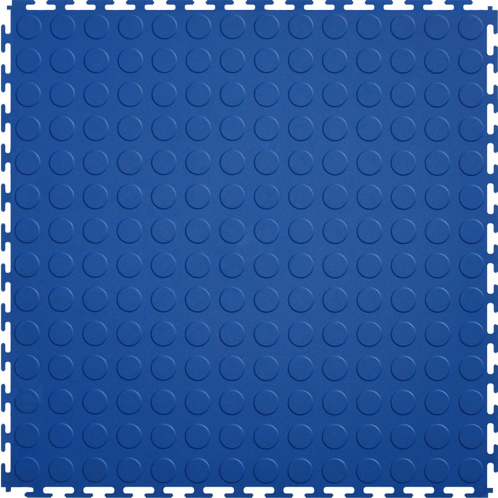 Blue Coin.jpg