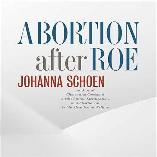 schoen abortion after roe.jpg