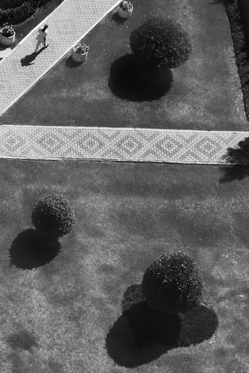 Melvin Mapa-Garden.jpg