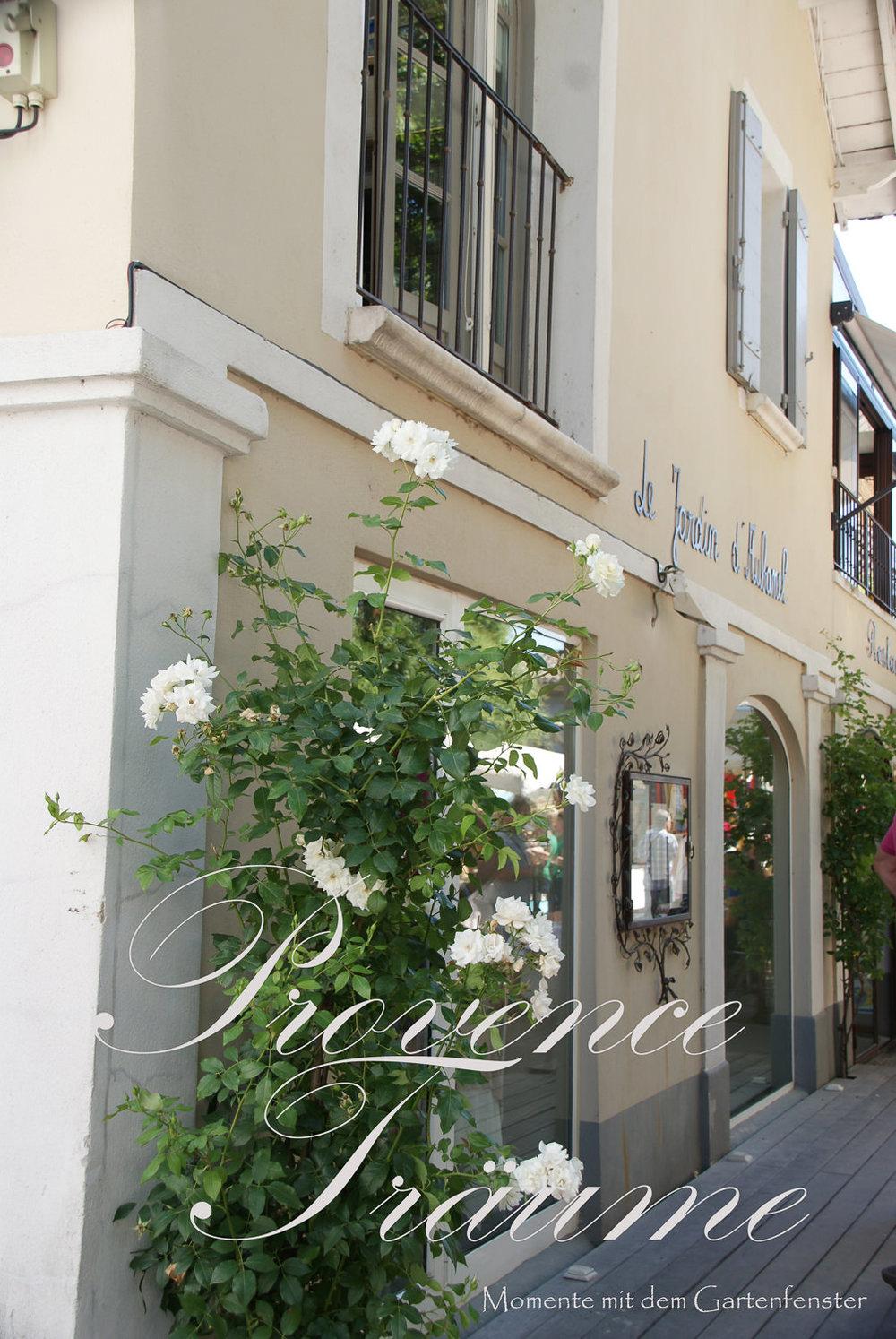 063_Lavendel Provence Gartenfenster.jpg