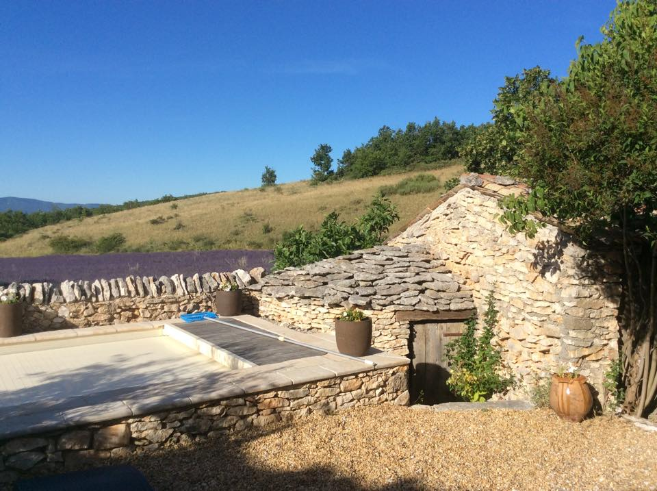 Gartenfenster Lavendel Provence (9).jpg