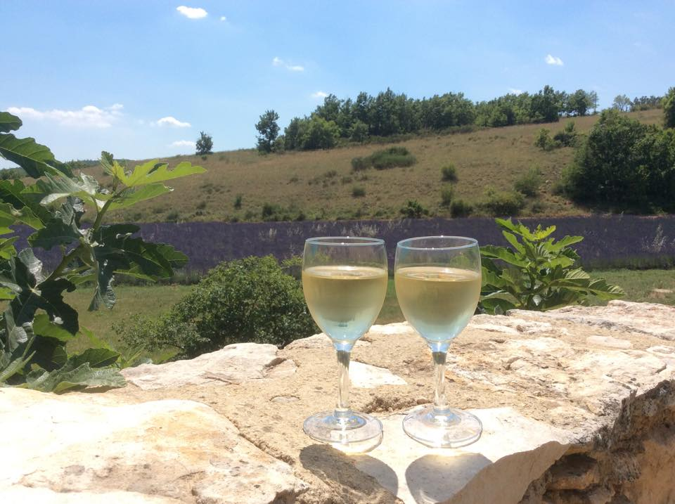 Gartenfenster Lavendel Provence (16).jpg