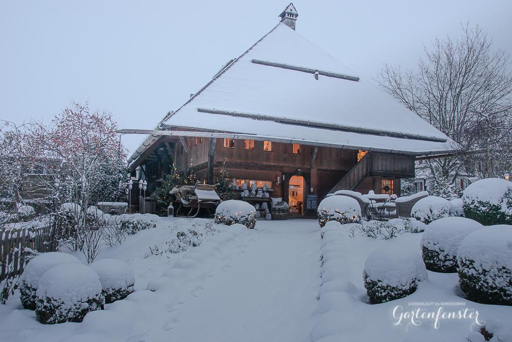 Gartenfenster schnee-2.jpg