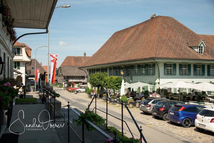 331_850_6022_Gartenfenster-Sommerfest.JPG