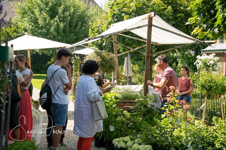 346_850_6073_Gartenfenster-Sommerfest.JPG