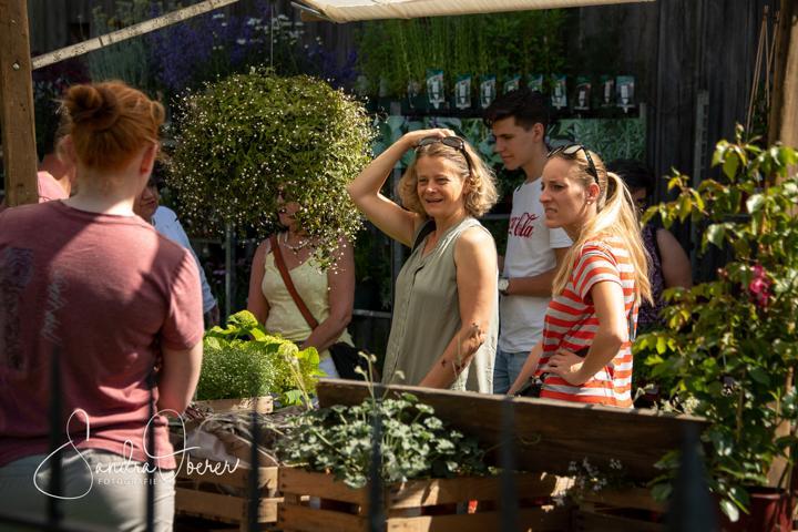 350_850_6099_Gartenfenster-Sommerfest.JPG
