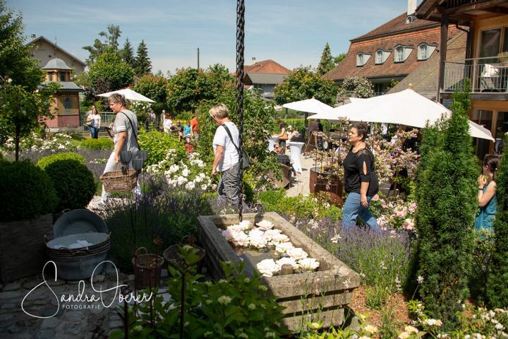 399_850_6245_Gartenfenster-Sommerfest.JPG