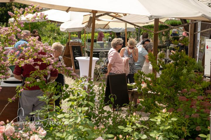 578_850_6723_Gartenfenster-Sommerfest.JPG