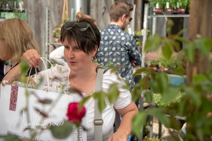 612_850_6859_Gartenfenster-Sommerfest.JPG
