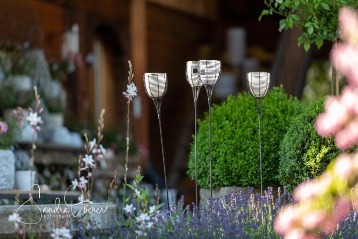 Z321_850_5989_Gartenfenster-Sommerfest (7).JPG