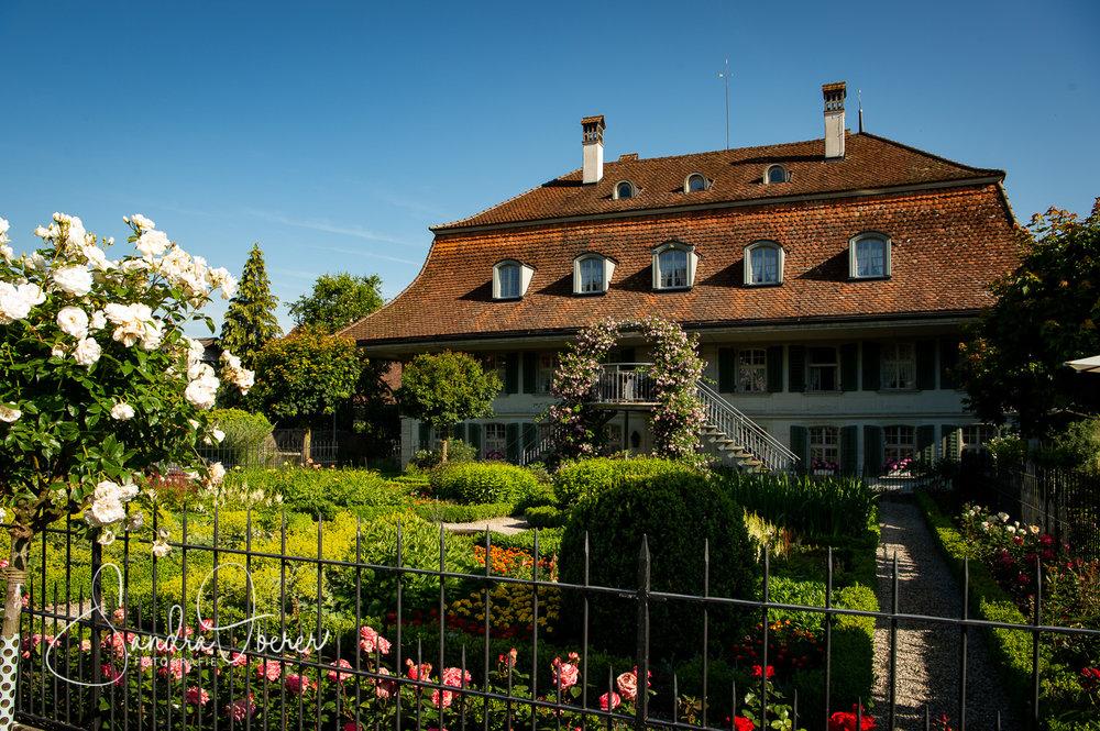 184__D042142_Gartenfenster-Sommerfest.jpg