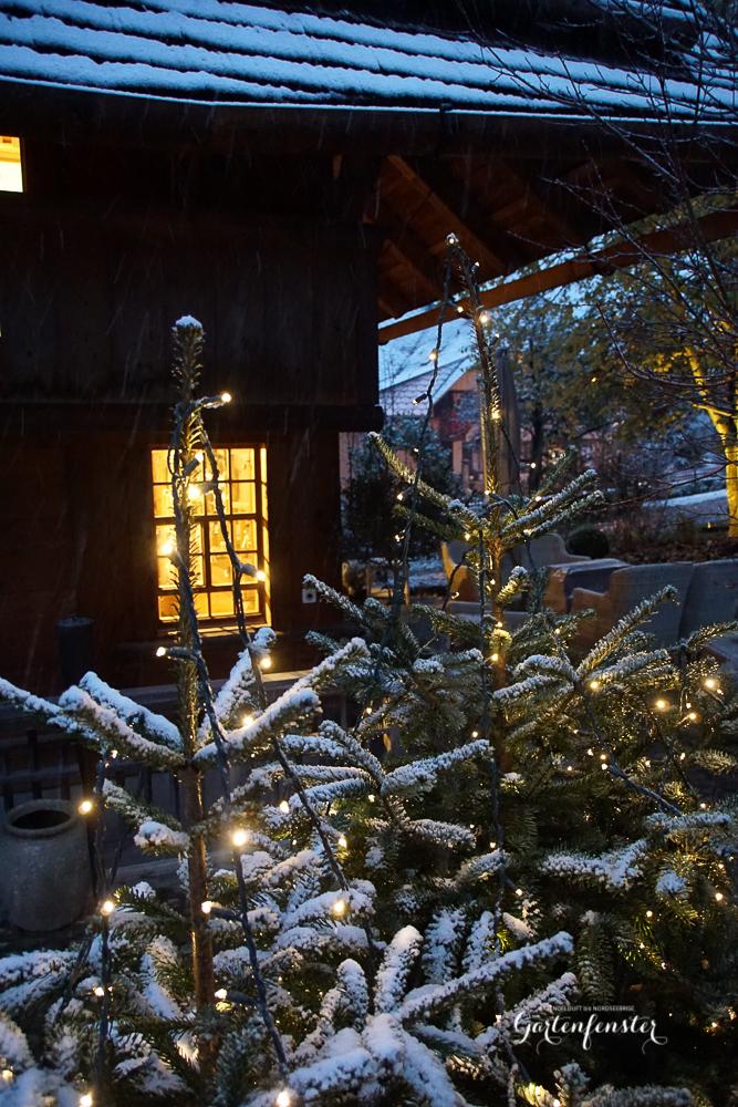 Gartenfenster erster SChnee-5.jpg
