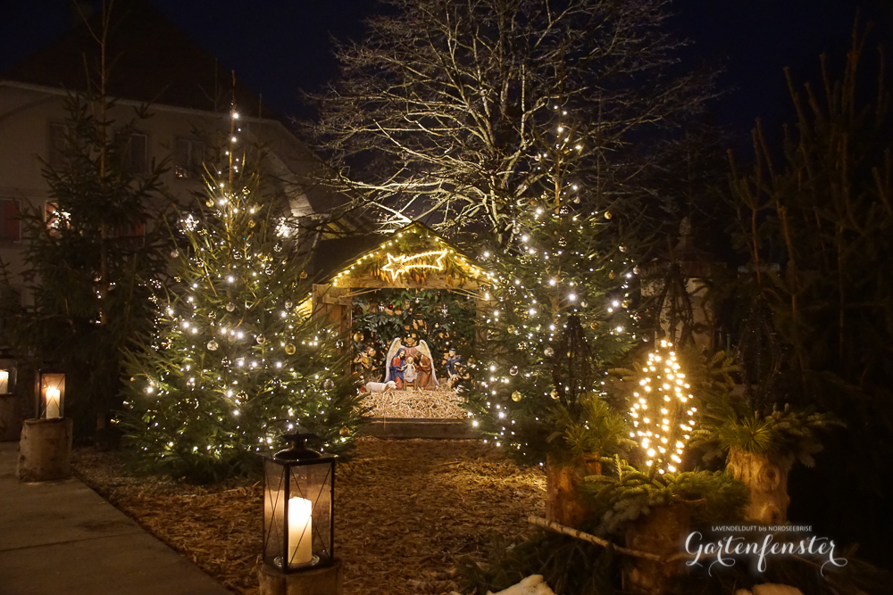 Gartenfensterweihnachtenlkichter-11.jpg